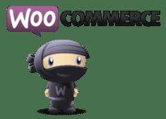 woocommerce-1