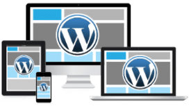 wordpress development packages